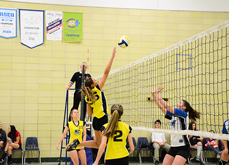 volleyball intérieur